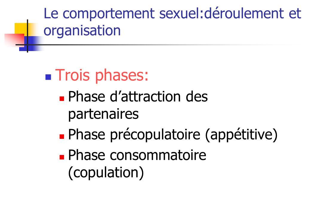 Le comportement sexuel:déroulement et organisation Trois phases: Phase dattraction des partenaires Phase précopulatoire (appétitive) Phase consommatoi