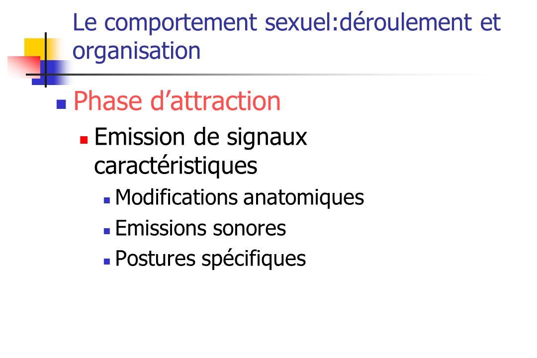Le comportement sexuel:déroulement et organisation Phase dattraction Emission de signaux caractéristiques Modifications anatomiques Emissions sonores