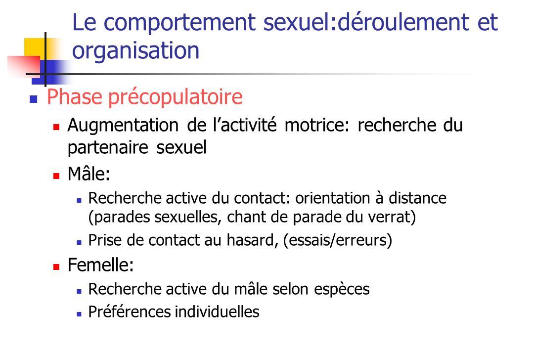 Le comportement sexuel:déroulement et organisation Phase précopulatoire Augmentation de lactivité motrice: recherche du partenaire sexuel Mâle: Recher
