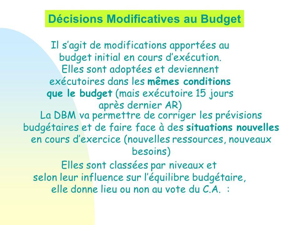 Décisions Modificatives au Budget Il sagit de modifications apportées au budget initial en cours dexécution. Elles sont adoptées et deviennent exécuto
