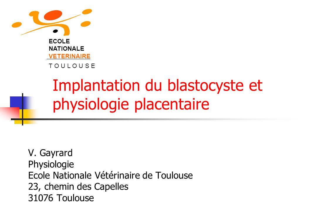 Période embryonnaire: divisions cellulaires, premières différenciations Stade blastocyste: implantation Implantation=stratégie reproductive Synchronisation nécessaire