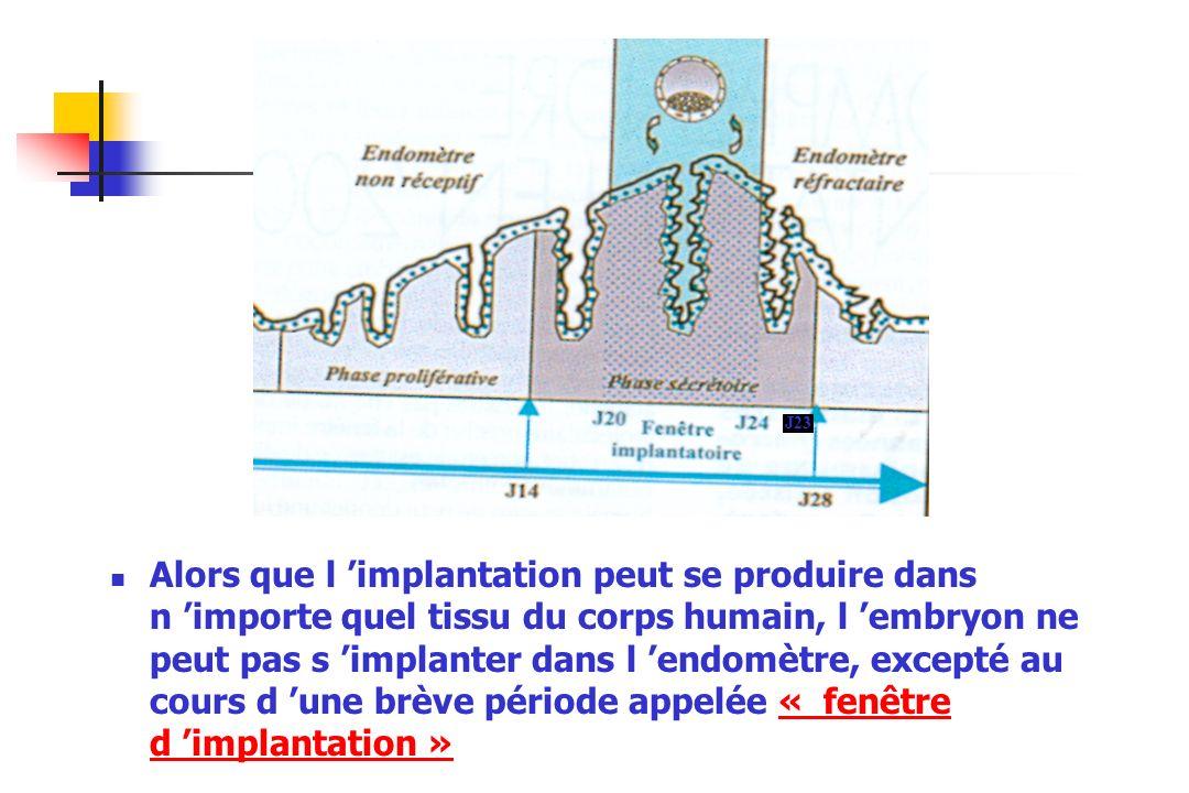 Alors que l implantation peut se produire dans n importe quel tissu du corps humain, l embryon ne peut pas s implanter dans l endomètre, excepté au co