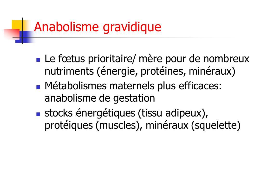Anabolisme gravidique Le fœtus prioritaire/ mère pour de nombreux nutriments (énergie, protéines, minéraux) Métabolismes maternels plus efficaces: ana