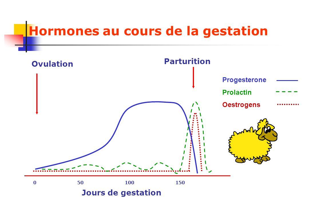 Hormones au cours de la gestation Progesterone Prolactin Oestrogens 0 50 100 150 Ovulation Parturition Jours de gestation
