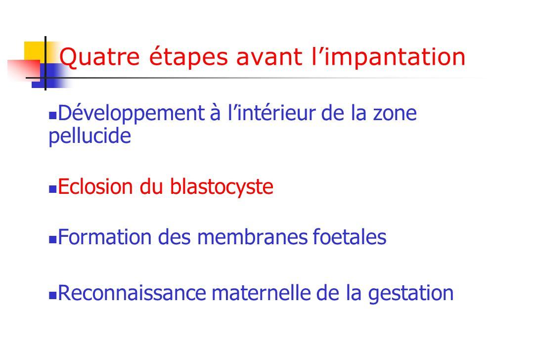 Conclusion Implantation de lembryon en développement: signaux embryonnaires et utérins Physiologie placentaire Echanges Fonction endocrine unité foeto-placentaire