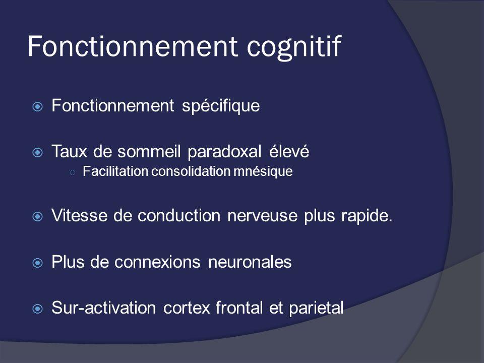 Fonctionnement cognitif Fonctionnement spécifique Taux de sommeil paradoxal élevé Facilitation consolidation mnésique Vitesse de conduction nerveuse p