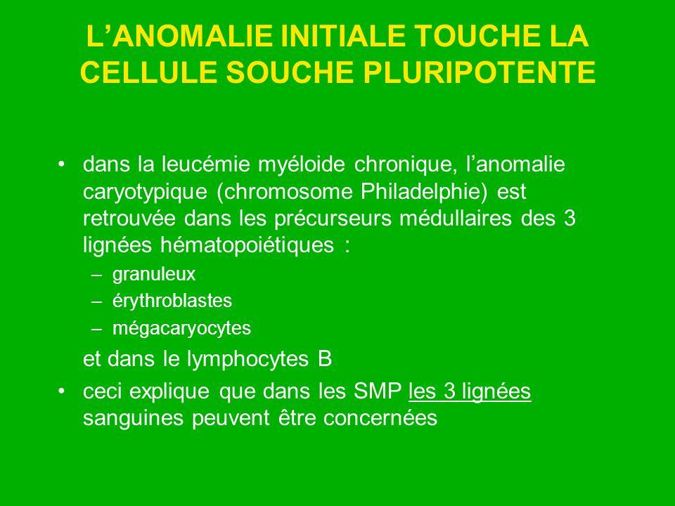 LANOMALIE INITIALE TOUCHE LA CELLULE SOUCHE PLURIPOTENTE dans la leucémie myéloide chronique, lanomalie caryotypique (chromosome Philadelphie) est ret