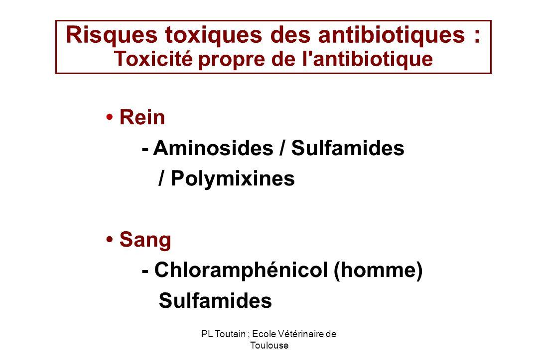 PL Toutain ; Ecole Vétérinaire de Toulouse Risques toxiques des antibiotiques : Toxicité propre de l'antibiotique Rein - Aminosides / Sulfamides / Pol
