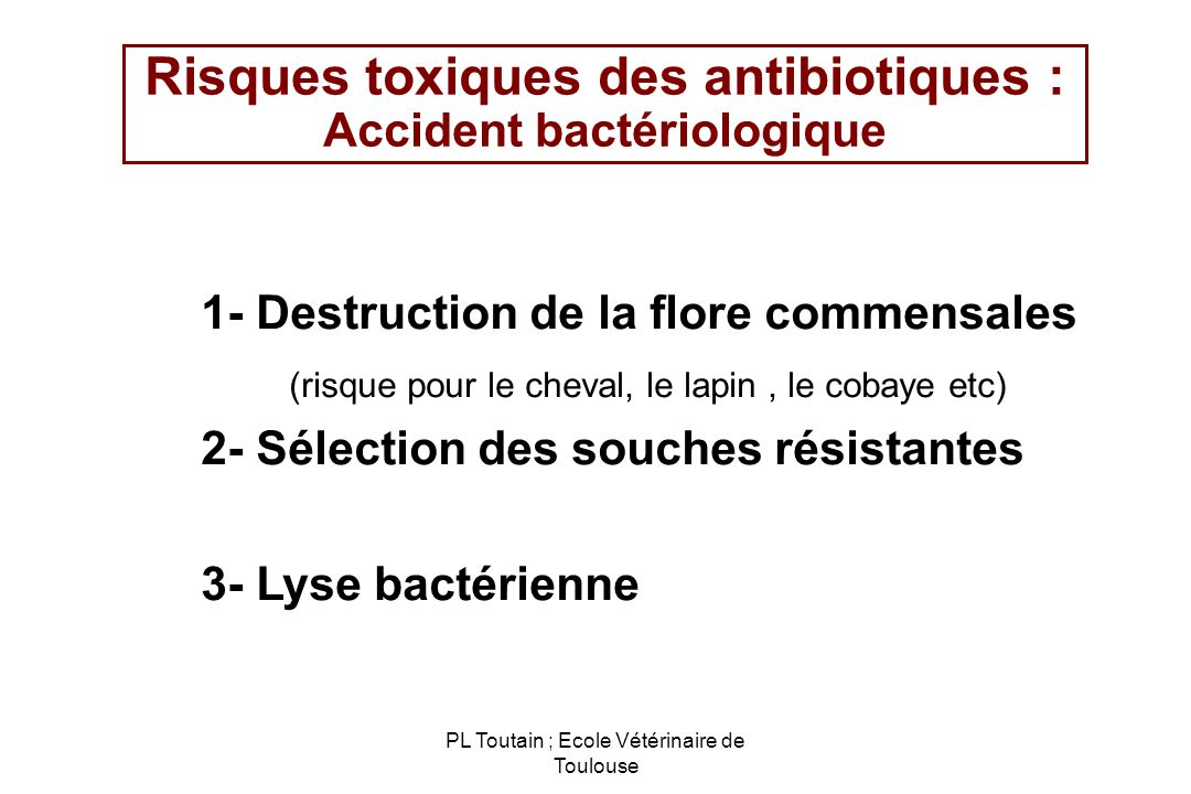 PL Toutain ; Ecole Vétérinaire de Toulouse Risques toxiques des antibiotiques : Accident bactériologique 1- Destruction de la flore commensales (risqu
