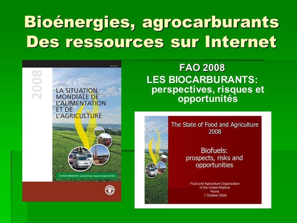 FAO 2008 LES BIOCARBURANTS: perspectives, risques et opportunités Bioénergies, agrocarburants Des ressources sur Internet