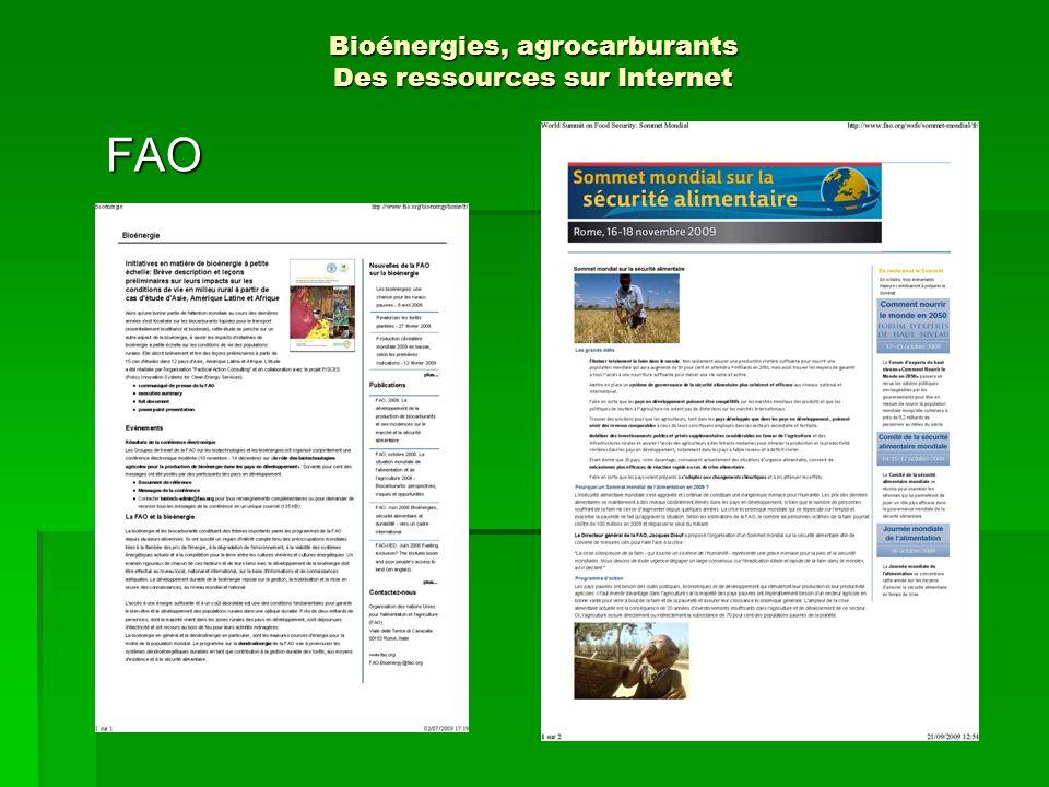 http://europa.eu/legislation_summaries/http://europa.eu/legislation_summaries/energy/index_en.htm Bioénergies, agrocarburants Des ressources sur Internet