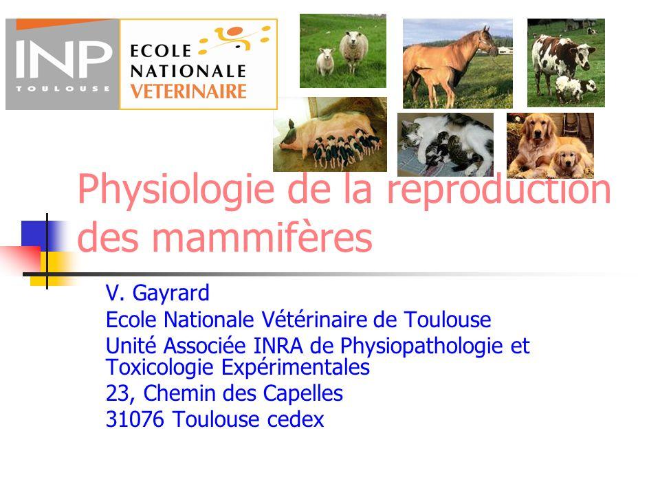 Physiologie de la reproduction des mammifères V. Gayrard Ecole Nationale Vétérinaire de Toulouse Unité Associée INRA de Physiopathologie et Toxicologi