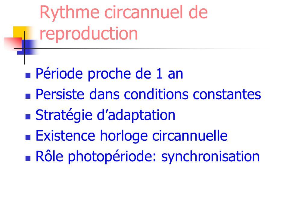 Rythme circannuel de reproduction Période proche de 1 an Persiste dans conditions constantes Stratégie dadaptation Existence horloge circannuelle Rôle