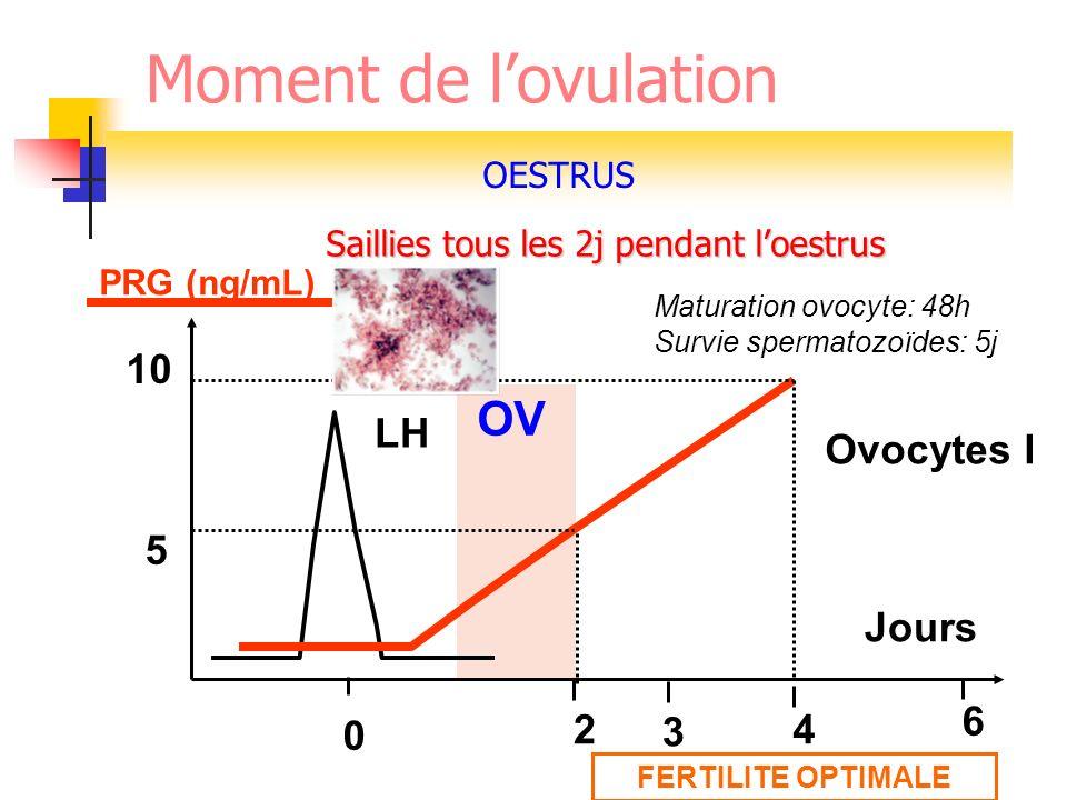 PRG (ng/mL) LH 5 10 24 Jours 0 OV Ovocytes I FERTILITE OPTIMALE Maturation ovocyte: 48h Survie spermatozoïdes: 5j Moment de lovulation Saillies tous l