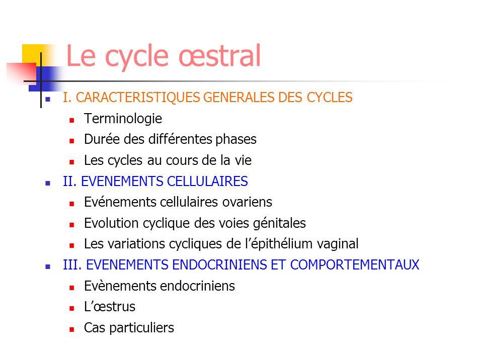 Le cycle œstral I. CARACTERISTIQUES GENERALES DES CYCLES Terminologie Durée des différentes phases Les cycles au cours de la vie II. EVENEMENTS CELLUL