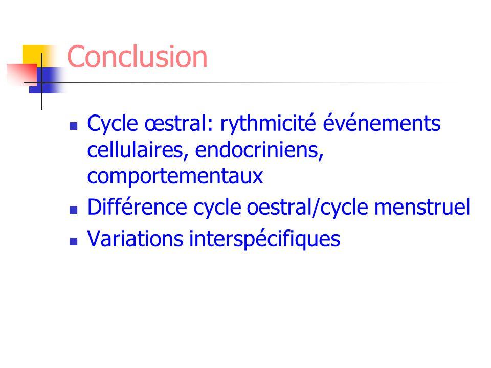 Conclusion Cycle œstral: rythmicité événements cellulaires, endocriniens, comportementaux Différence cycle oestral/cycle menstruel Variations interspé