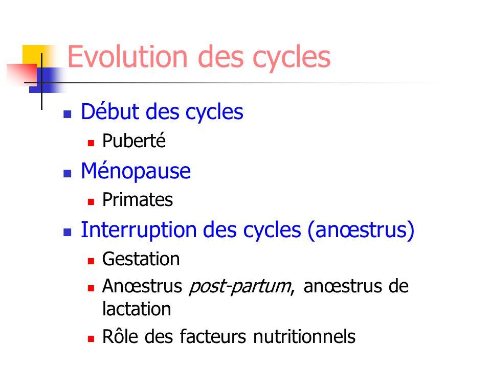 Evolution des cycles Début des cycles Puberté Ménopause Primates Interruption des cycles (anœstrus) Gestation Anœstrus post-partum, anœstrus de lactat