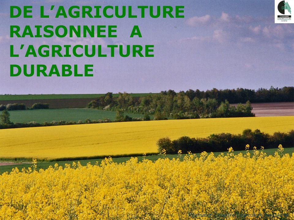 Séminaire Agriculture Raisonnée 30 mars 2007 DE LAGRICULTURE RAISONNEE A LAGRICULTURE DURABLE Réalisation Chambre dagriculture de la Marne