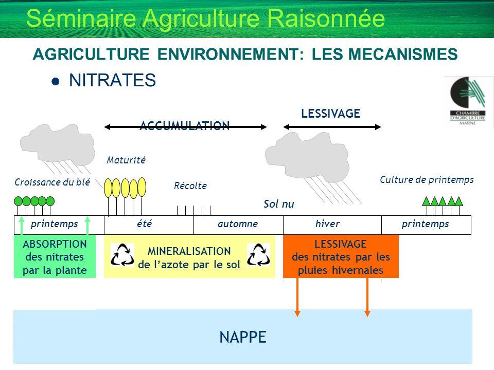Séminaire Agriculture Raisonnée AGRICULTURE ENVIRONNEMENT: LES MECANISMES NITRATES Culture de printemps printempsétéautomnehiverprintemps ABSORPTION d