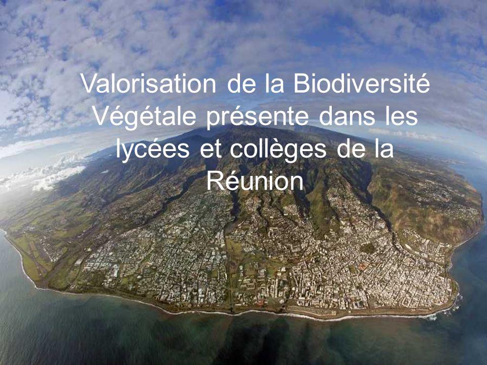 Valorisation de la Biodiversité Végétale présente dans les lycées et collèges de la Réunion