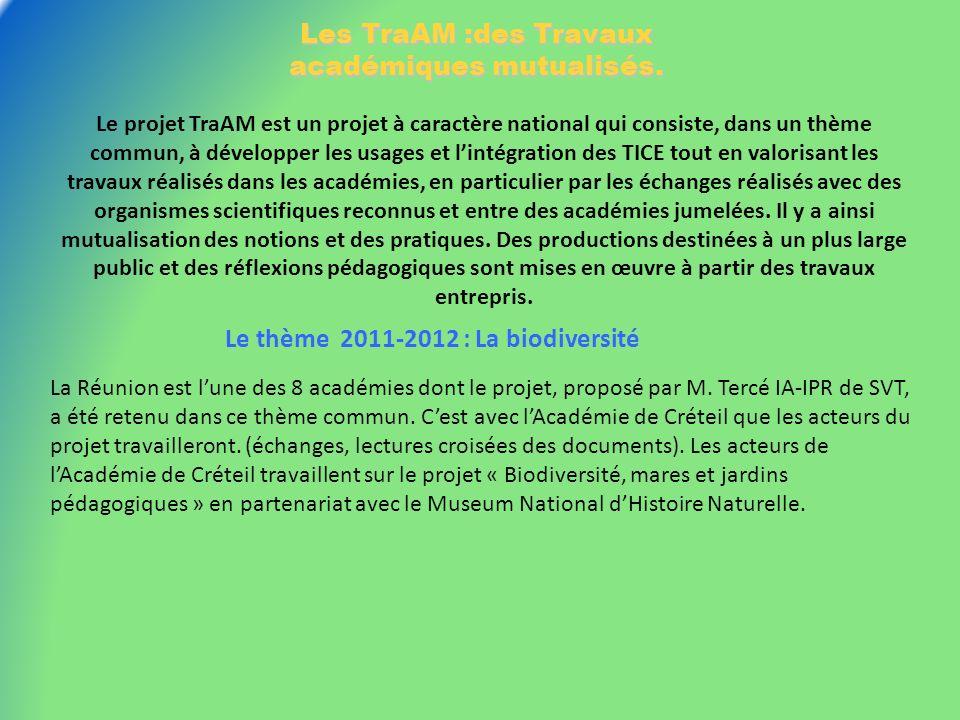 Les TraAM :des Travaux académiques mutualisés. Le projet TraAM est un projet à caractère national qui consiste, dans un thème commun, à développer les
