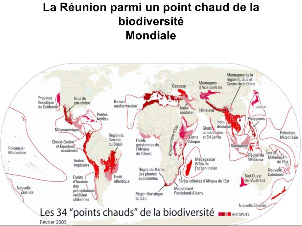 La Réunion parmi un point chaud de la biodiversité Mondiale