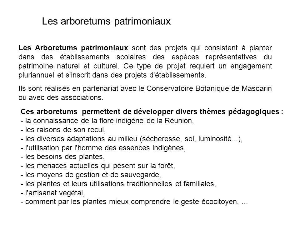 Les arboretums patrimoniaux Les Arboretums patrimoniaux sont des projets qui consistent à planter dans des établissements scolaires des espèces représ