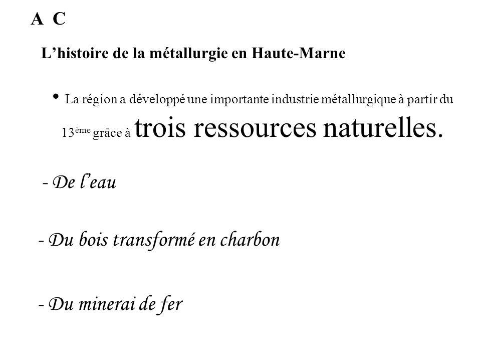 Lhistoire de la métallurgie en Haute-Marne La 1ère entreprise métallurgique de Dommartin était exploitée par des moines. B Quand a été fondé la premiè
