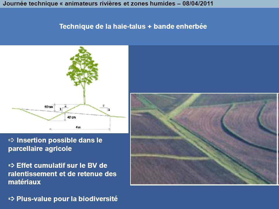 Technique de la haie-talus + bande enherbée Journée technique « animateurs rivières et zones humides – 08/04/2011 Insertion possible dans le parcellai