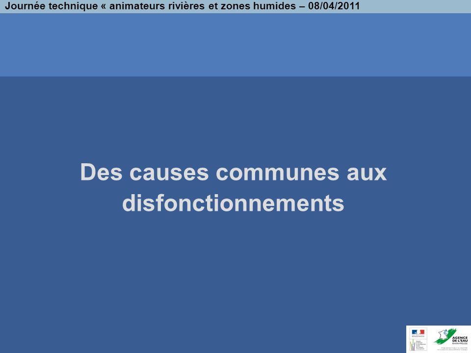 Des causes communes aux disfonctionnements Journée technique « animateurs rivières et zones humides – 08/04/2011