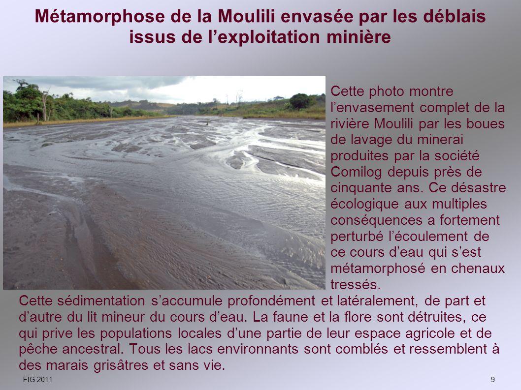 Métamorphose de la Moulili envasée par les déblais issus de lexploitation minière Cette sédimentation saccumule profondément et latéralement, de part