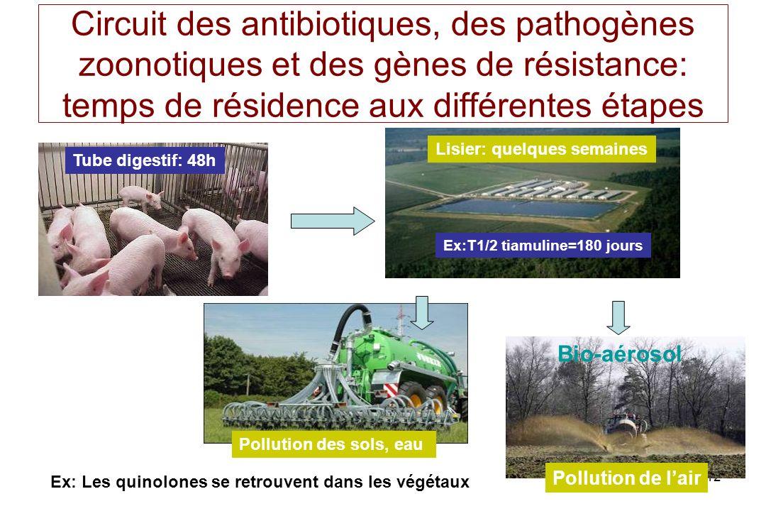 112 Circuit des antibiotiques, des pathogènes zoonotiques et des gènes de résistance: temps de résidence aux différentes étapes Tube digestif: 48h Lis
