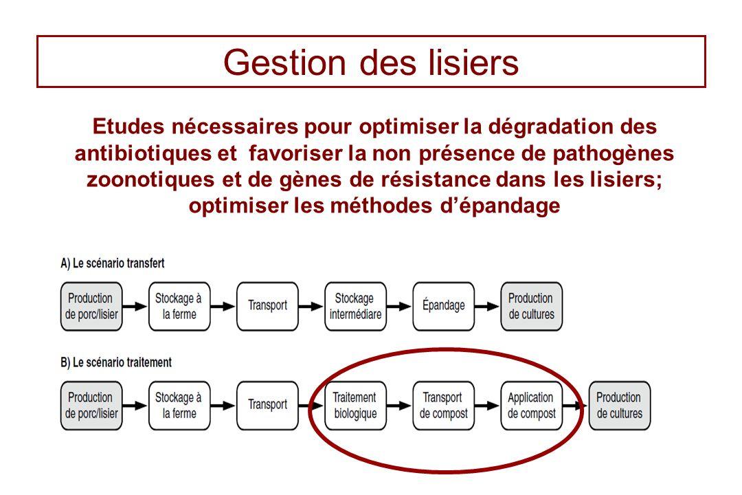 Gestion des lisiers Etudes nécessaires pour optimiser la dégradation des antibiotiques et favoriser la non présence de pathogènes zoonotiques et de gè