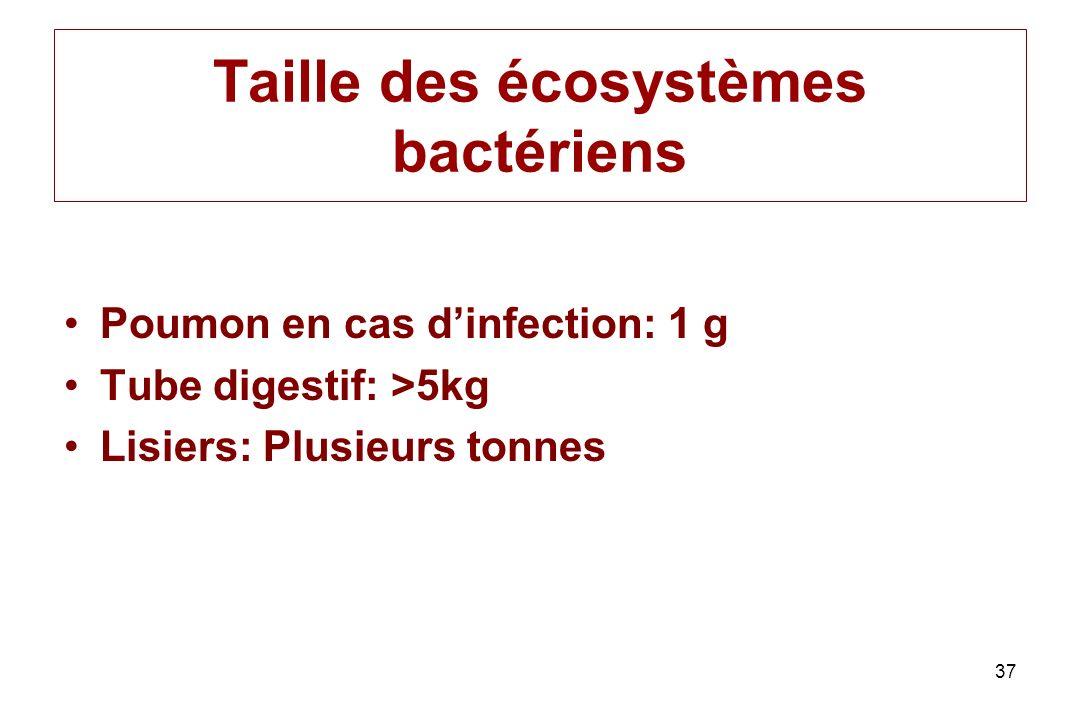 Taille des écosystèmes bactériens Poumon en cas dinfection: 1 g Tube digestif: >5kg Lisiers: Plusieurs tonnes 37