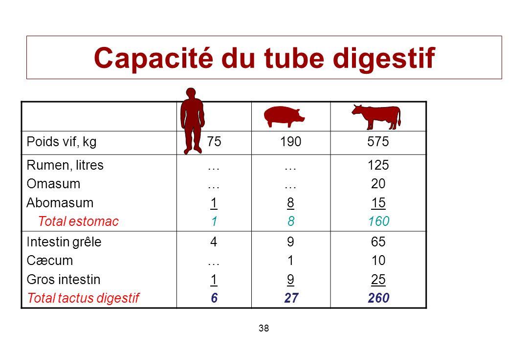 38 Capacité du tube digestif Poids vif, kg75190575 Rumen, litres Omasum Abomasum Total estomac ……11……11 ……88……88 125 20 15 160 Intestin grêle Cæcum Gr