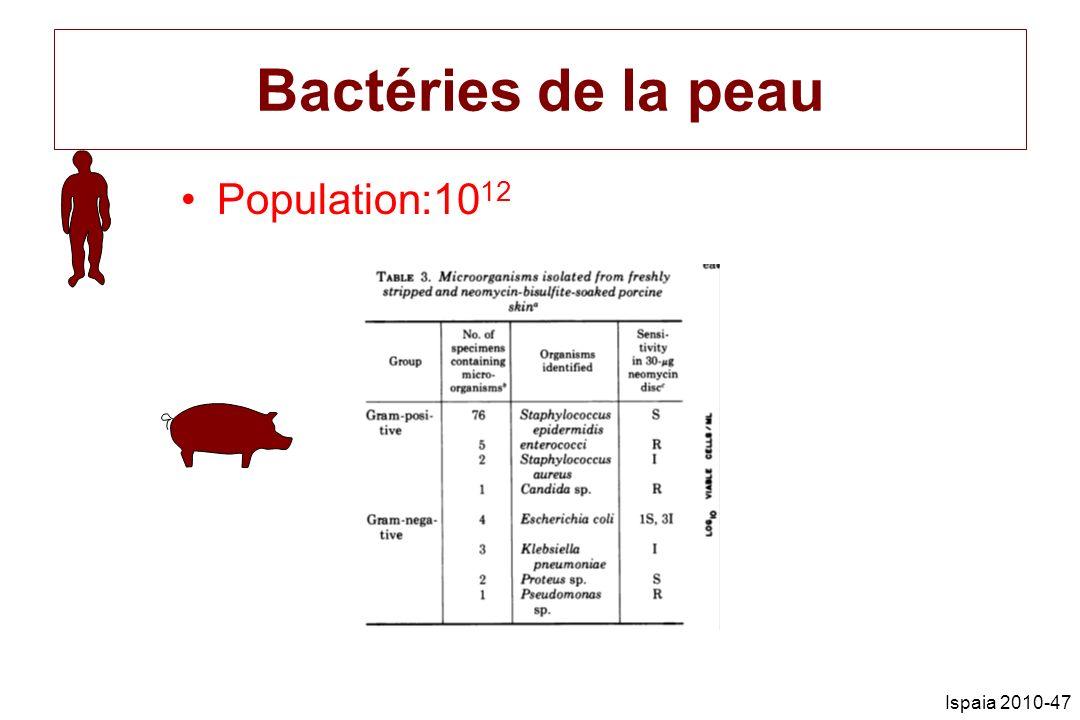 Ispaia 2010-47 Bactéries de la peau Population:10 12