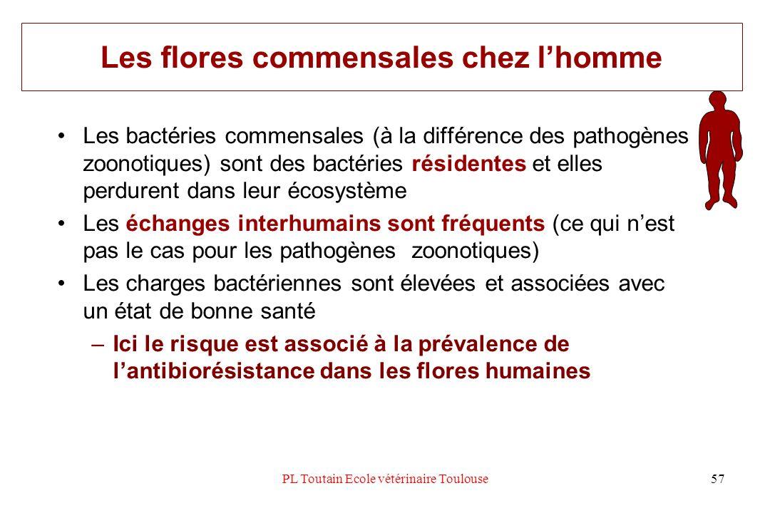 PL Toutain Ecole vétérinaire Toulouse57 Les flores commensales chez lhomme Les bactéries commensales (à la différence des pathogènes zoonotiques) sont