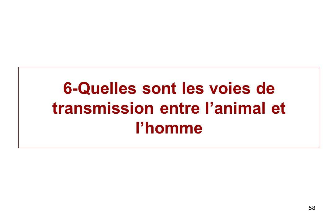 58 6-Quelles sont les voies de transmission entre lanimal et lhomme