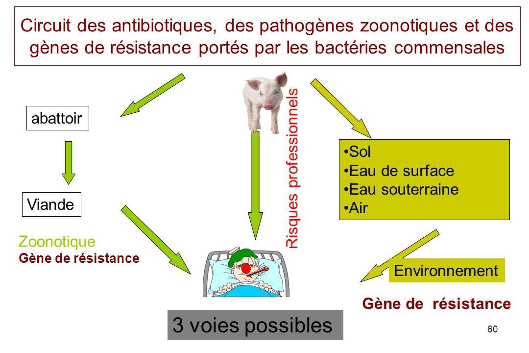 60 Circuit des antibiotiques, des pathogènes zoonotiques et des gènes de résistance portés par les bactéries commensales abattoir Viande Risques profe