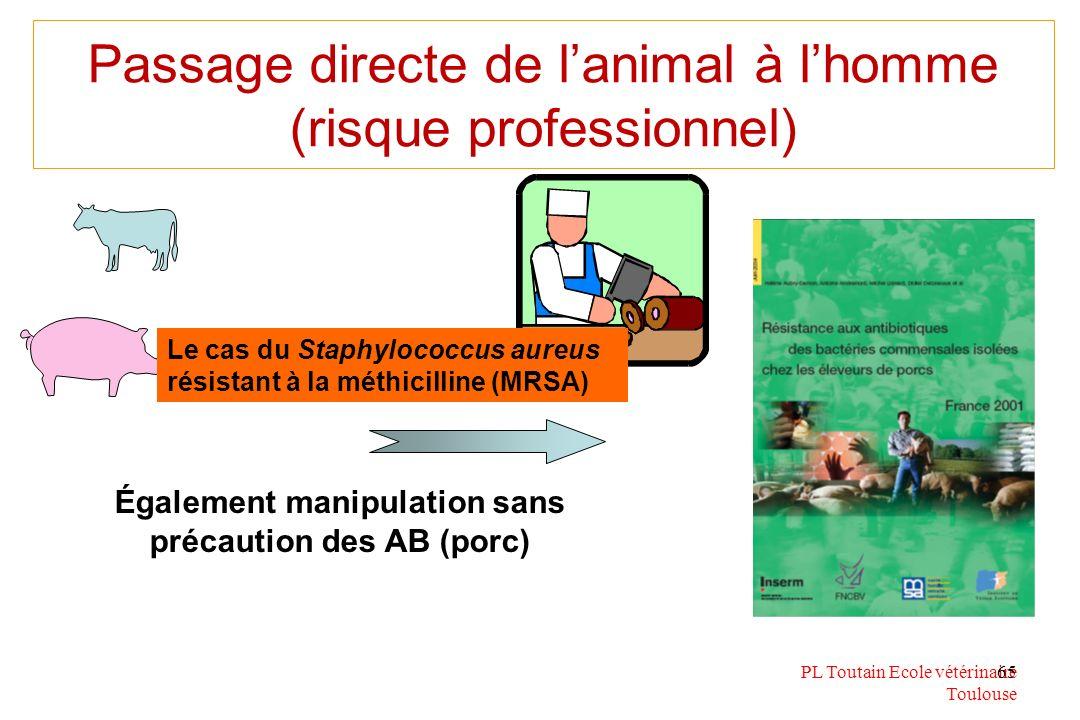 PL Toutain Ecole vétérinaire Toulouse 65 Passage directe de lanimal à lhomme (risque professionnel) Également manipulation sans précaution des AB (por