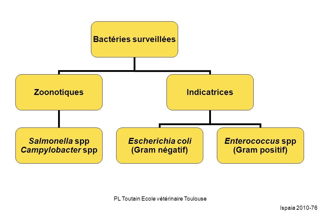 PL Toutain Ecole vétérinaire Toulouse Ispaia 2010-76 Bactéries surveillées Zoonotiques Salmonella spp Campylobacter spp Indicatrices Escherichia coli