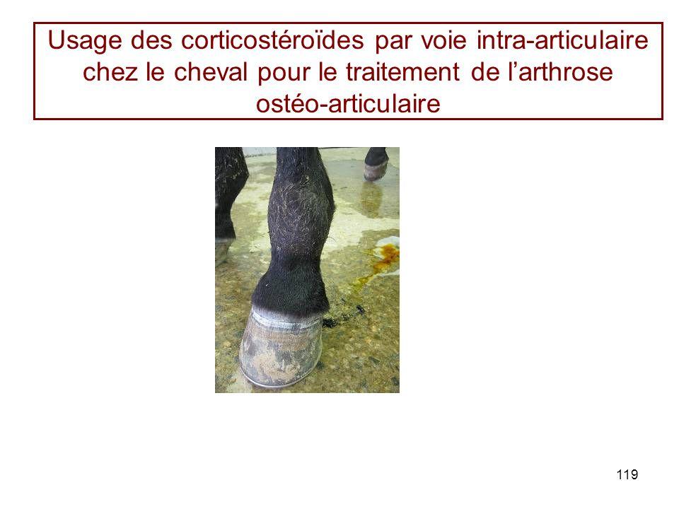 119 Usage des corticostéroïdes par voie intra-articulaire chez le cheval pour le traitement de larthrose ostéo-articulaire