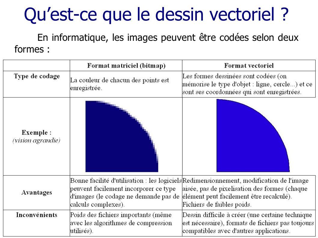 Quest-ce que le dessin vectoriel ? En informatique, les images peuvent être codées selon deux formes :