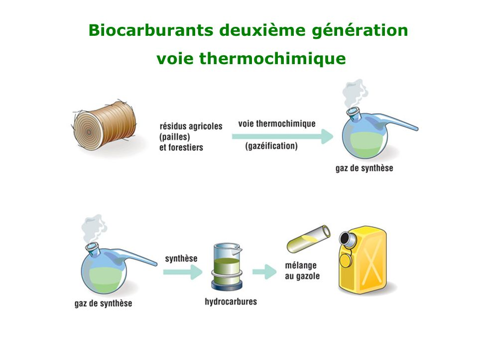 Biocarburants deuxième génération voie thermochimique
