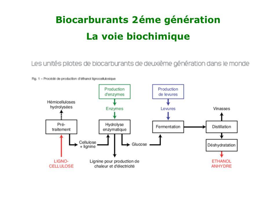 Biocarburants 2éme génération La voie biochimique