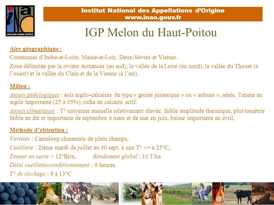 Institut National des Appellations dOrigine www.inao.gouv.fr IGP Melon du Haut-Poitou Aire géographique : Communes dIndre-et-Loire, Maine-et-Loir, Deux-Sèvres et Vienne.