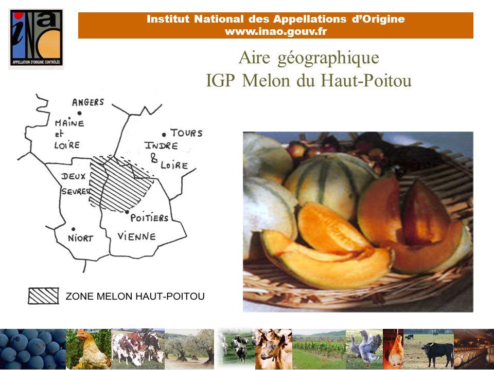 Institut National des Appellations dOrigine www.inao.gouv.fr Aire géographique IGP Melon du Haut-Poitou
