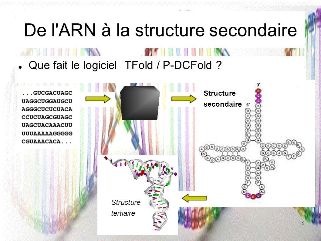 16 De l'ARN à la structure secondaire Que fait le logiciel TFold / P-DCFold ? Structure secondaire Structure tertiaire