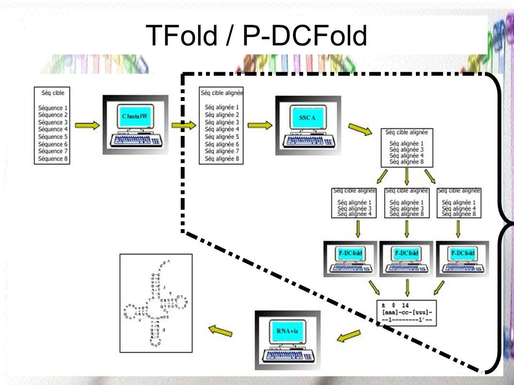 16 De l ARN à la structure secondaire Que fait le logiciel TFold / P-DCFold .