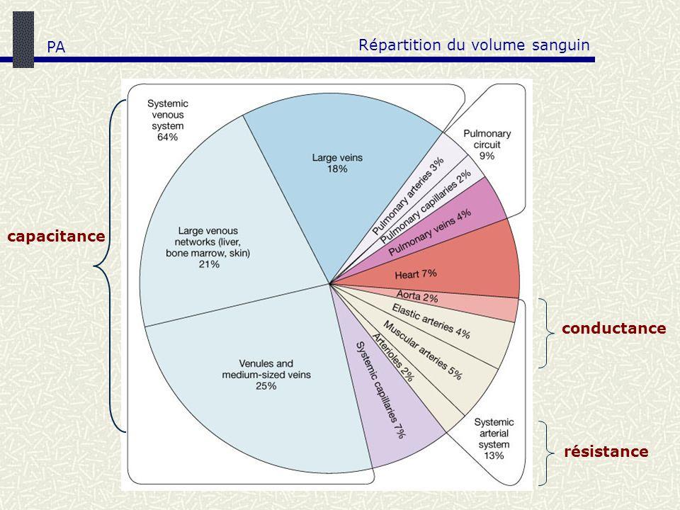 Répartition du volume sanguin PA conductance capacitance résistance